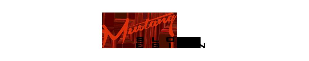 Mustang Slot Design - Chasis 3d slot